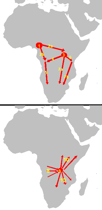 what is cameroon, congo and southern bantu DNA