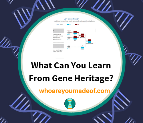 What Can You Learn From Gene Heritage_