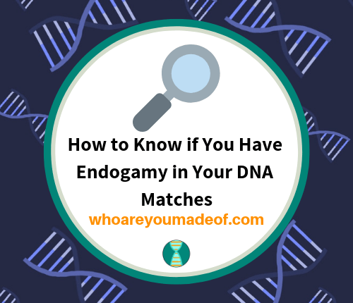 How to Know if You Have Endogamy in Your DNA Matches