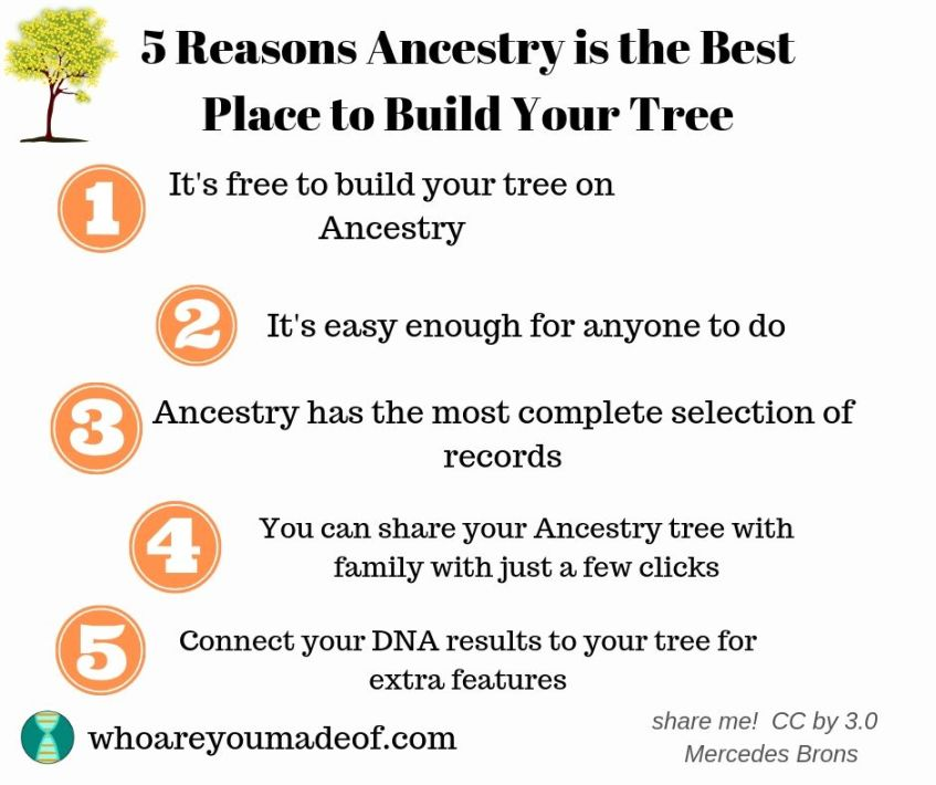 Five reasons Ancestry is the best place to build your tree:  1 It's free to build your tree on Ancestry 2  It's easy enough for anyone to do  3  Ancestry has the most complete selection of records 4  You can share your Ancestry tree with just a few clicks  5 Connect your DNA results to your tree for extrafeatures