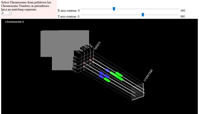 example of Gedmatch 3D chromosome browser