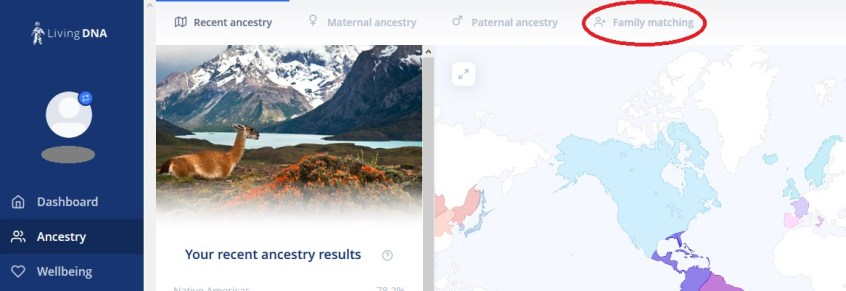 How to access DNA matches from your Ancestry Results screen on Living DNA