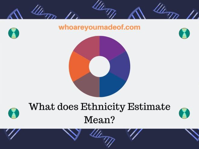 What does Ethnicity Estimate Mean_