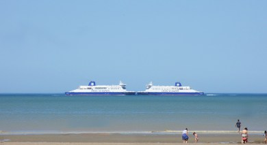 dfds2_IMG_4244