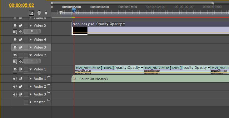 Premiere Pro :: 2:35:1 :: Cinemascope/Anamorphic Crop