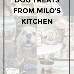 Milos Kitchen Small Round Table Home Style Treats With Milo S Pollinate Media Group Dog From At Meijer Pmedia Miloskitchen