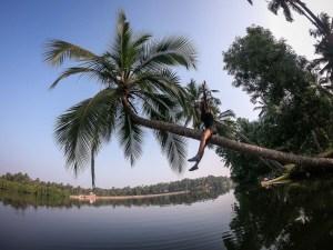 sharanya-iyer-climbing-coconut-tree