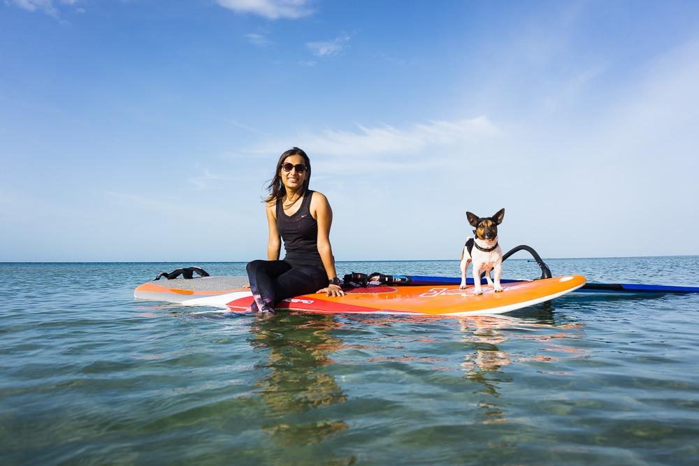 Dog Ocean Adventure Companion