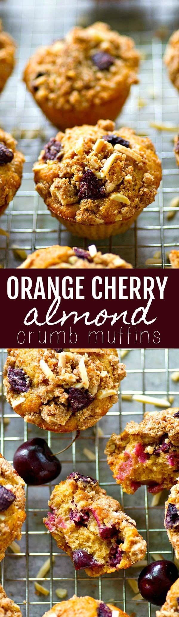 Soft, melt-in-your-mouth orange cherry almond crumb muffins are packed with juicy cherries, tons of citrus flavor, and topped off with an irresistible almond streusel topping.