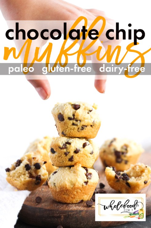 Paleo Chocolate Chip Muffins - easy, deliciously soft and fluffy paleo muffins that are gluten-free, dairy-free. Perfect for breakfasts, lunch boxes, or after school snacks!