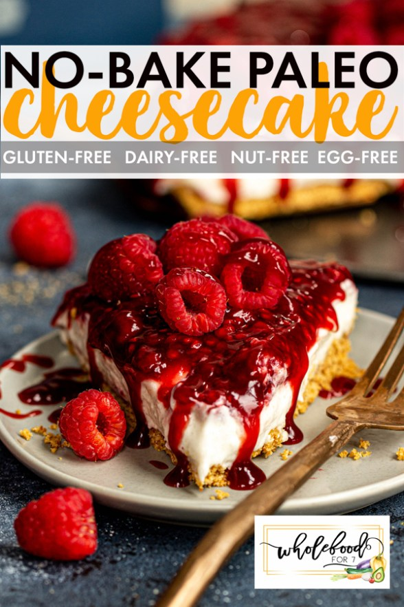 No-Bake Paleo Cheesecake - Gluten-free, dairy-free, nut-free, egg-free, EASY!