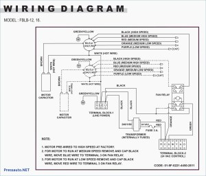 3 Phase Immersion Heater Wiring Diagram Collection