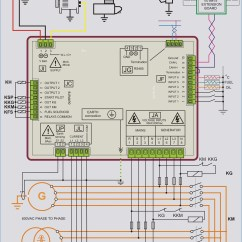 3 Pole Switch Wiring Diagram Nitrous Kit Transfer Collection