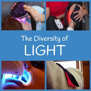 The Diversity of Light
