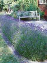 50 fresh and beautiful front yard landscaping ideas
