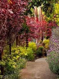 09 affordable low maintenance front yard landscaping ideas