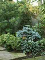 22 affordable low maintenance front yard landscaping ideas