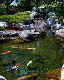 50 awesome backyard ponds and water feature landscaping ideas