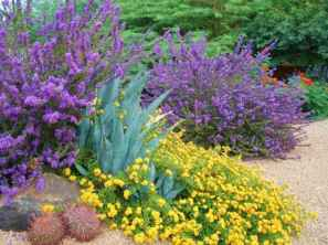70 affordable low maintenance front yard landscaping ideas