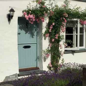 20 beautiful front yard cottage garden landscaping ideas