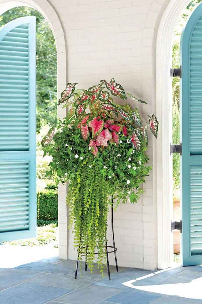 49 beautiful summer container garden flowers ideas