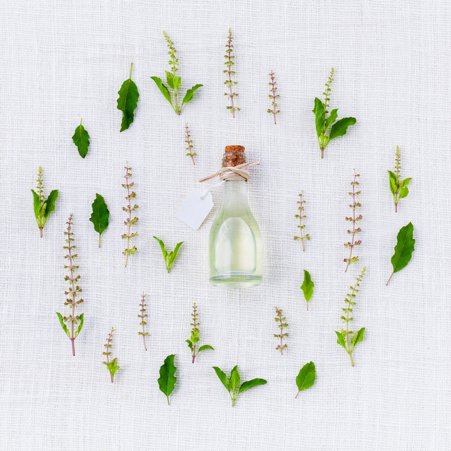 Healing with herbs- botanical medicines