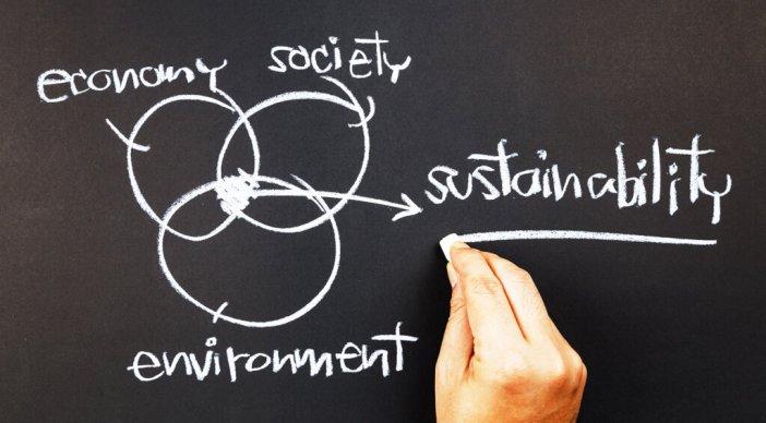 Sustainability Venn