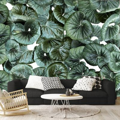 Back to the Wall - fantastically sustainable wallpapaer