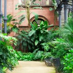 A biophilia delight. Rare and luxurious plants fill a Victorian conservatory.