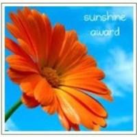 "I Was Nominated for the ""Sunshine Award"""
