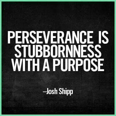 perseverance is stubbornness with a purpose