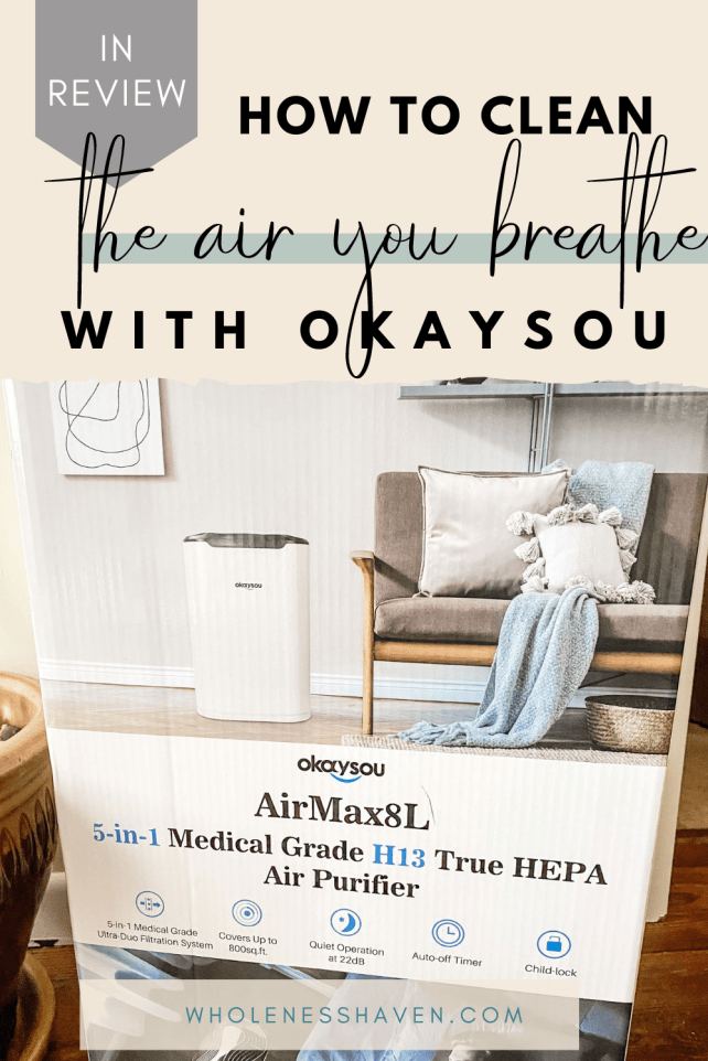 okaysou air purifier review: how to clean the air you breathe