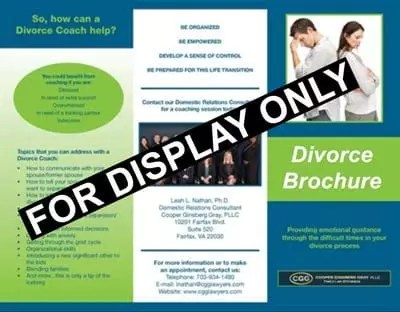the divorce brochure for dads