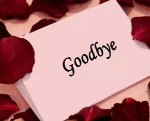 saying goodbye to move on