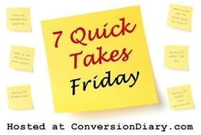 Seven Quick Takes Friday take one