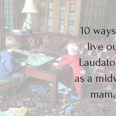10 ways to live Laudato Si as a midwest, mom of many