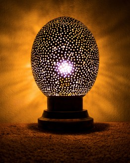 Egg Lamp MP-06BPLS-0