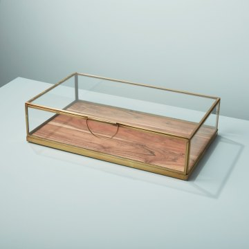 Glass Display Case with Wood Base, Large