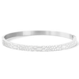 Bangle snake silver