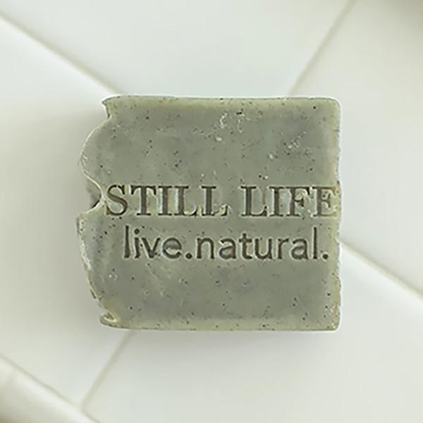 Still Life Cambrian Clay 1