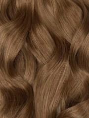 color chestnut brown