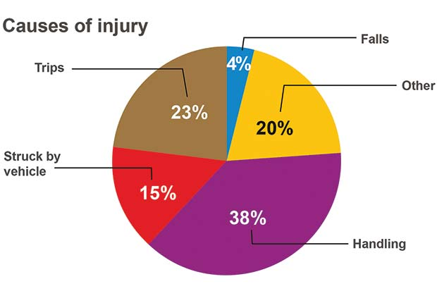 Causes-Injury-Chart[6]
