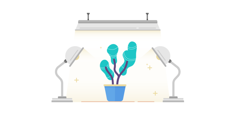 Growth Hack for Ecommerce Startups