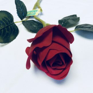 red rose bud stem