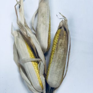 Corn Pick
