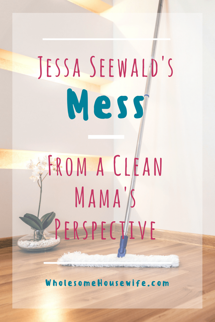 Jessa Seewald's Mess - From A Clean Mama's Perspective