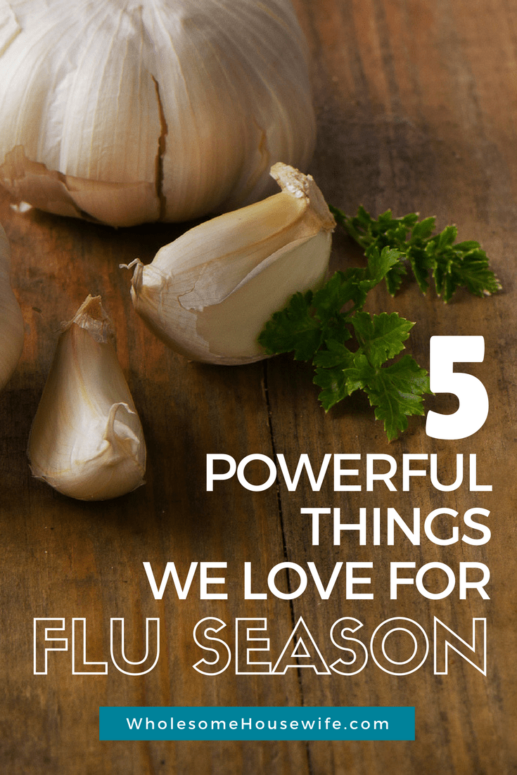 5 Proven Ways to Boost the Immune System