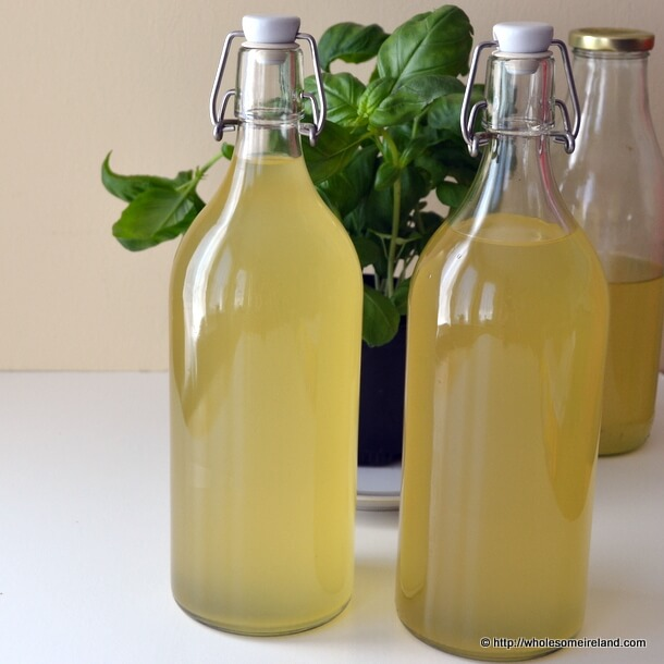 Elderflower Champagne - Wholesome Ireland - Food & Parenting Blog