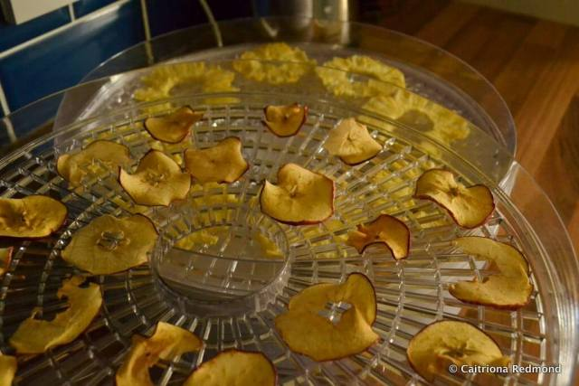 Apples & Pineapple in a Dehydrator