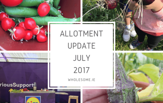 July 2017 Allotment Update